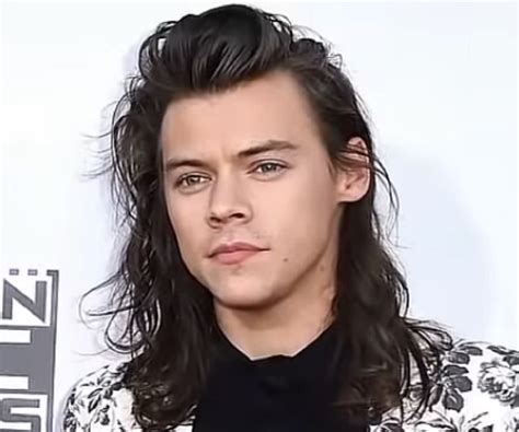 Harry Styles Biography - Facts, Childhood, Family Life