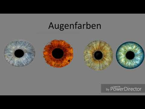 Farb-, Stil- & Typberaterin | Offenberger OEG