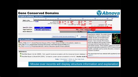 Gene Conserved Domains - YouTube