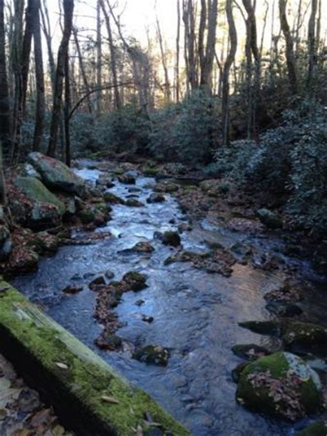 Roaring Fork (Great Smoky Mountains Nationalpark
